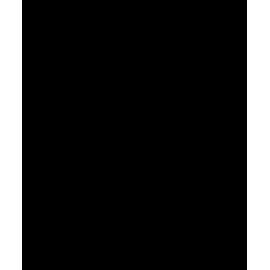 naklejka WINOROŚL wzór 5, 28x45 cm