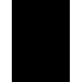 naklejka TWARZ KOBIETY 92x45 cm, 60 kolorów, wzór nr 1