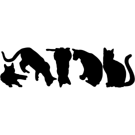 naklejki KOTY 5 sztuk - arkusz 28x95 cm - 60 kolorów