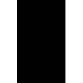 naklejki LIŚCIE DĘBU zestaw 13 szt, 13 i 9 cm